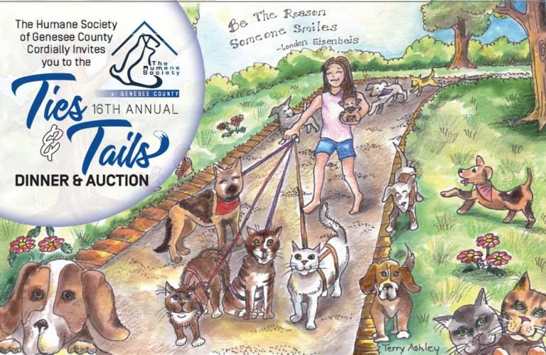 Drawing of girl watching animals.